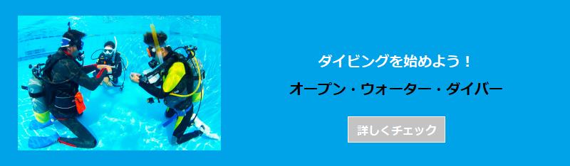 沖縄 オープン・ウォーター・ダイバー