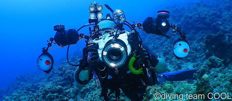 沖縄水中写真ダイビング