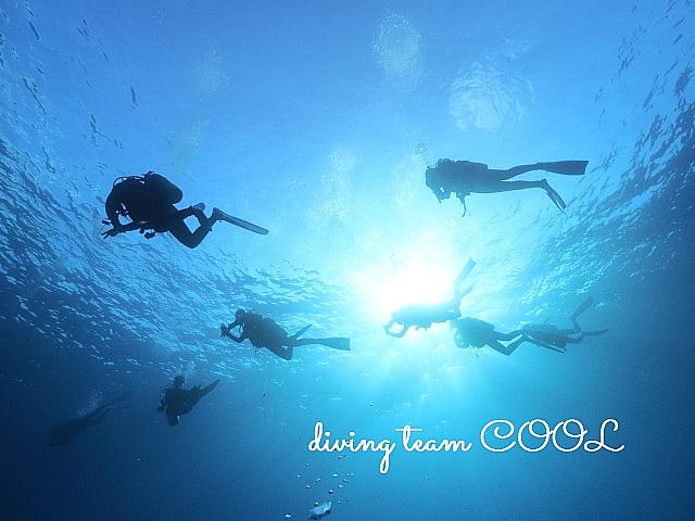 沖縄 ダイビング エントリー