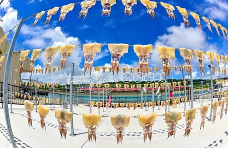 沖縄ダイビング トビイカの天日干し