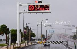 沖縄ダイビング 泊大橋