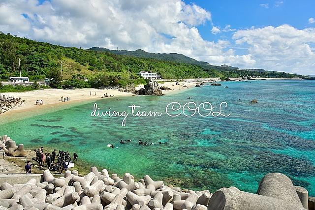 沖縄ダイビング ゴリラチョップ