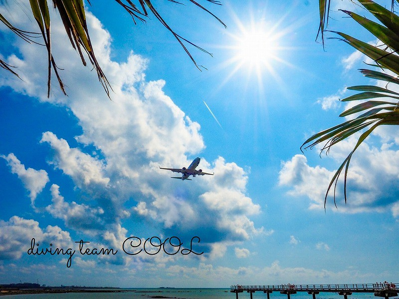 沖縄ダイビング 浪漫飛行
