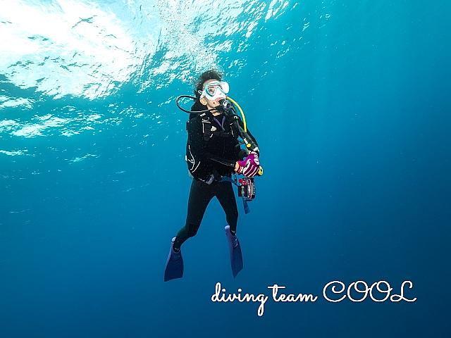 沖縄特訓ダイビング