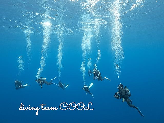 沖縄ダイビング 与那国島ダイビング