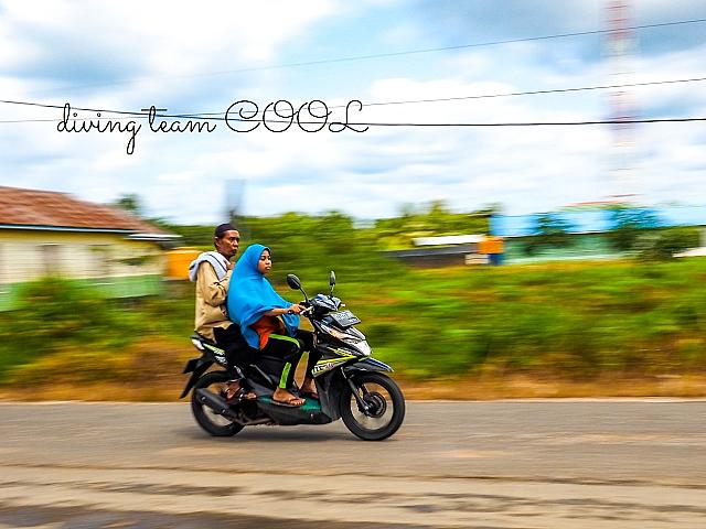 インドネシア ベラウ