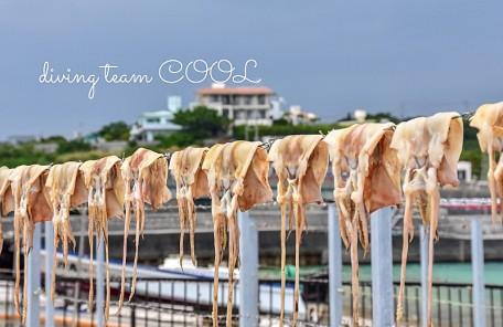 沖縄 トビイカの天日干し
