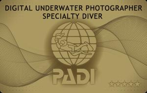 沖縄ダイビング デジタルアンダーウォーターフォトグラファーSP