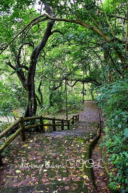 沖縄 末吉公園