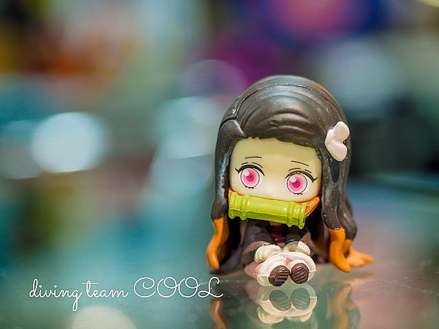 沖縄 禰豆子